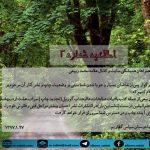آثار مرحوم ماموستا ملامحمد ربیعی(اطلاعیه شماره ۲)